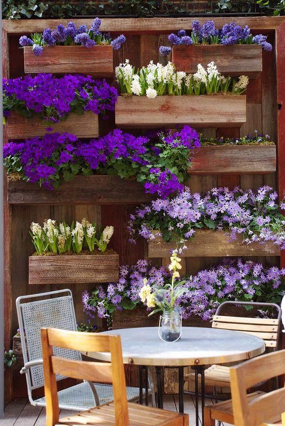 fotos-de-jardins-com-flores