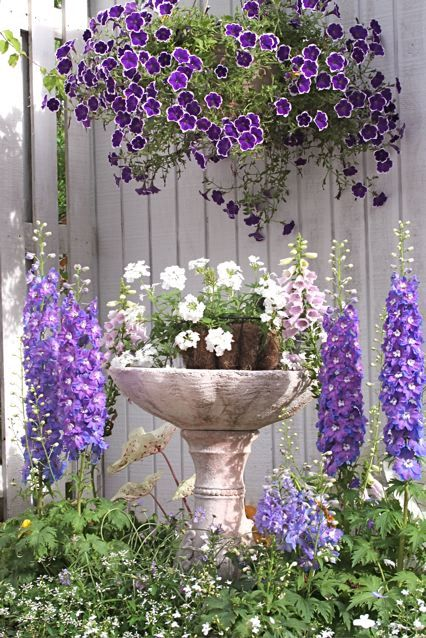jardins-com-flores-roxas