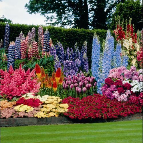 jardins-com-muitas-flores
