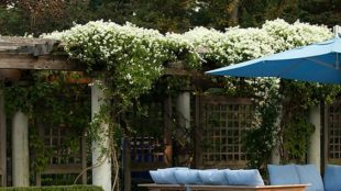 jardins-perfeitos