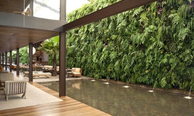 plantas jardins verticais:15 Modelos inspiradores de Jardins verticais