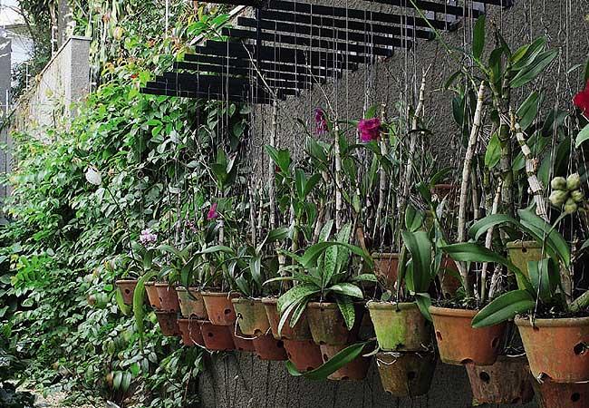 ideias para fazer um jardim simplesComo fazer um Jardim – Ideias