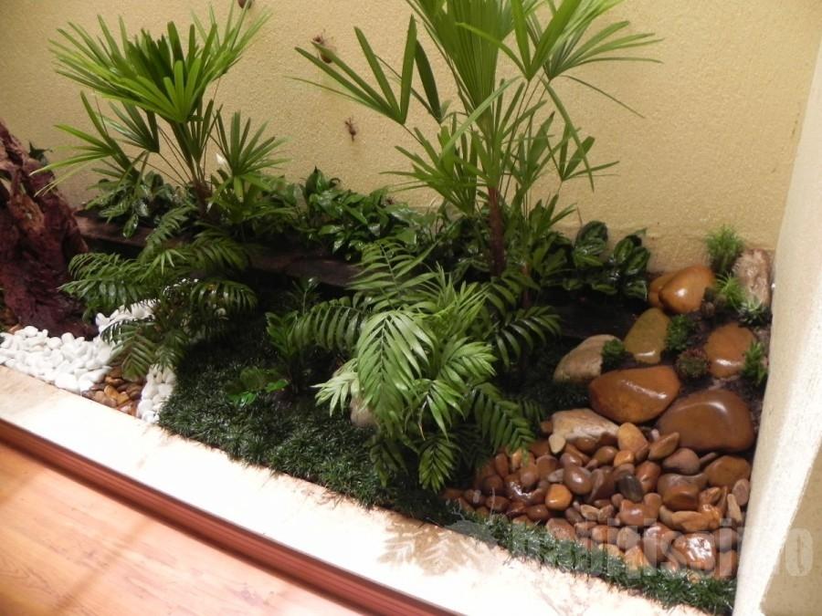 decoracao-de-jardim-inverno