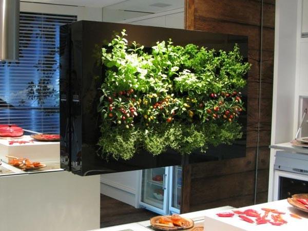 jardim vertical simples:jardim-vertical-pequeno