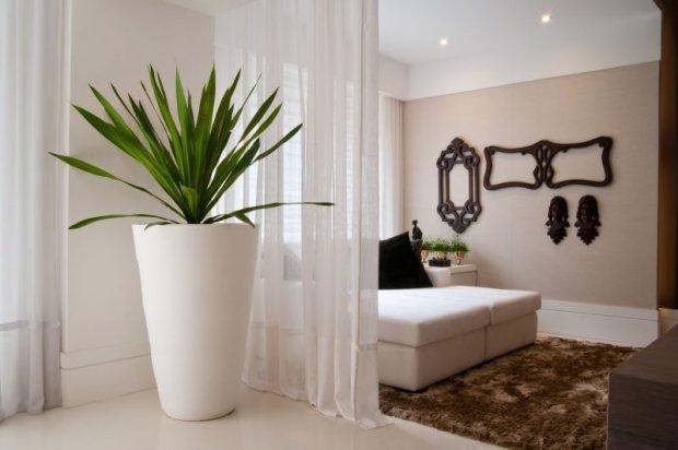 decoracao de ambientes internos pequenos:Decoração de Ambientes internos com plantas