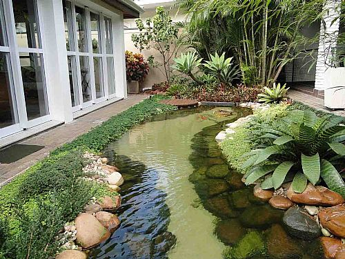 Lago artificial para peixes no jardim modelos for Modelos de estanques