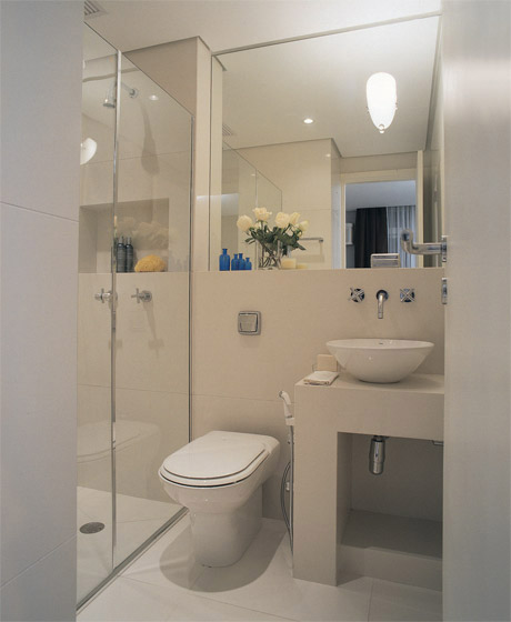 Banheiros Pequenos planejados Sugestões, modelos -> Banheiro Pequeno Com Sauna