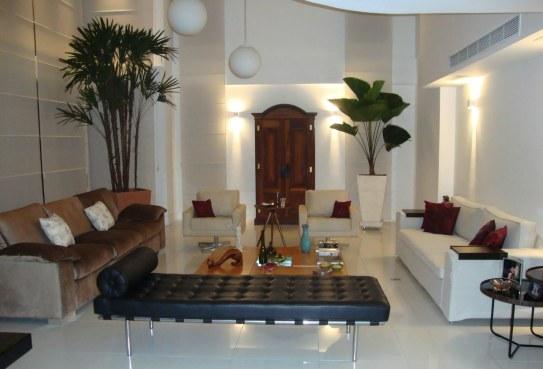 Decora o de ambientes internos com plantas for Casas decoradas con plantas naturales