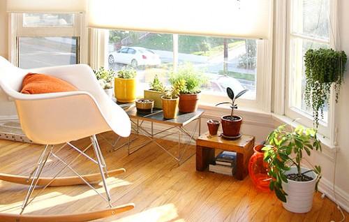 plantas-em-ambientes-internos