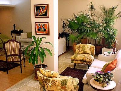 plantas-na-decoracao-de-ambiente-interno