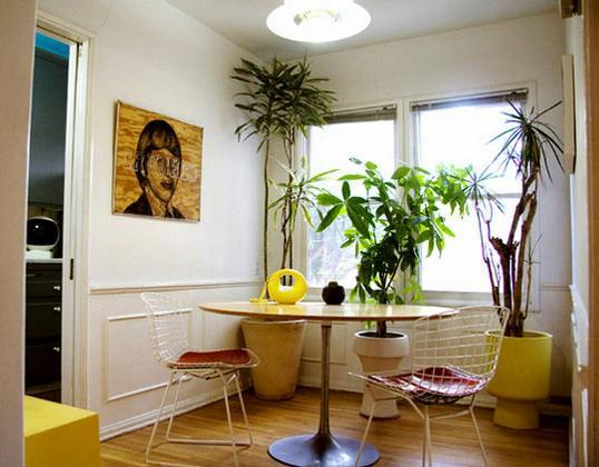 plantas-na-decoracao-interna