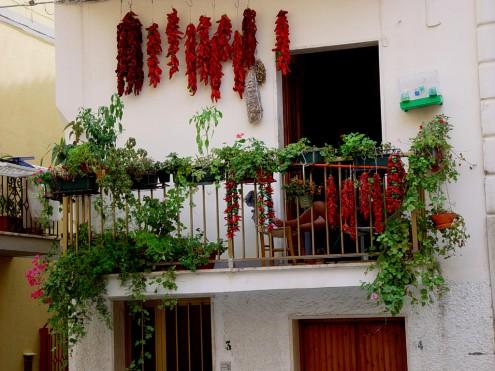 como-fazer-a-decoracao-de-varandas-com-plantas