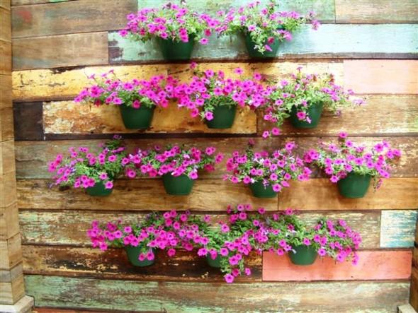 jardins ideias criativas : jardins ideias criativas:Como fazer um jardim barato no quintal