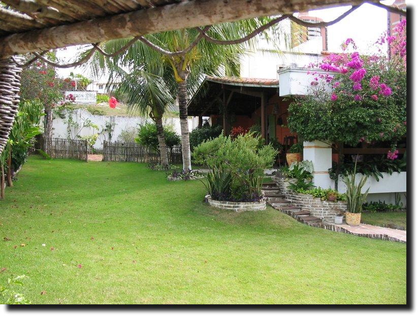 Como Fazer Um Jardim Simples E Barato No Quintal De Casa  Garden