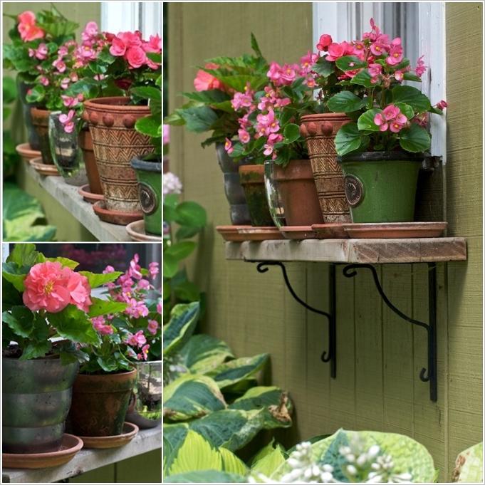 prateleira com vasos de flores