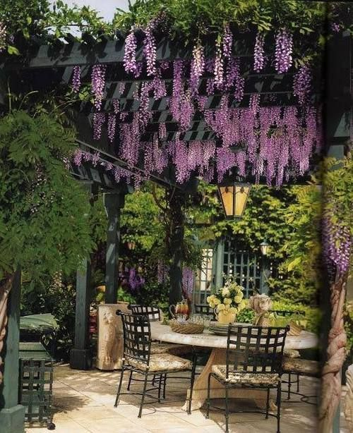 jardins-perfeitos-fotos
