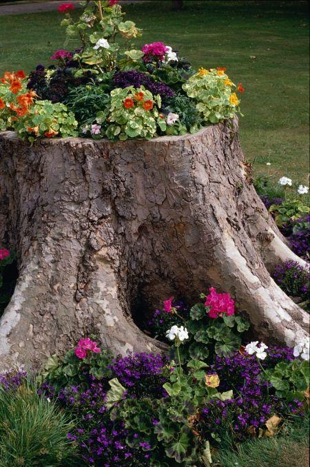 jardins-planejados-com-flores