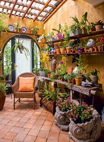 jardins-planejados-com-orquideas