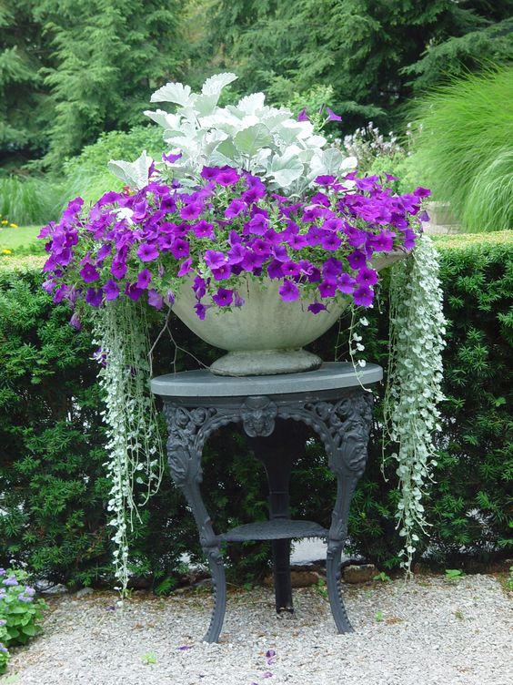 lindos-jardins-com-flores