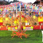 9 Modelos de Decoração de Aniversário Tema Festa Junina