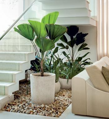 jardim-de-inverno-na-escada