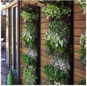 jardim-vertical-foto