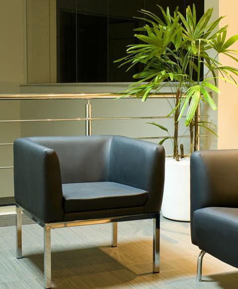 decoracao-com-plantas-dentro-de-casa