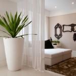 Decoração de Ambientes internos com plantas