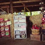14 Modelos para Decoração de Aniversário tema Fazenda