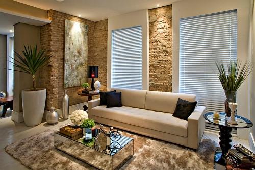 fotos-de-salas-de-estar-aconchegantes