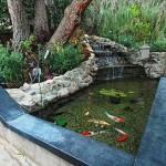 Lago Artificial para Peixes no Jardim – Modelos