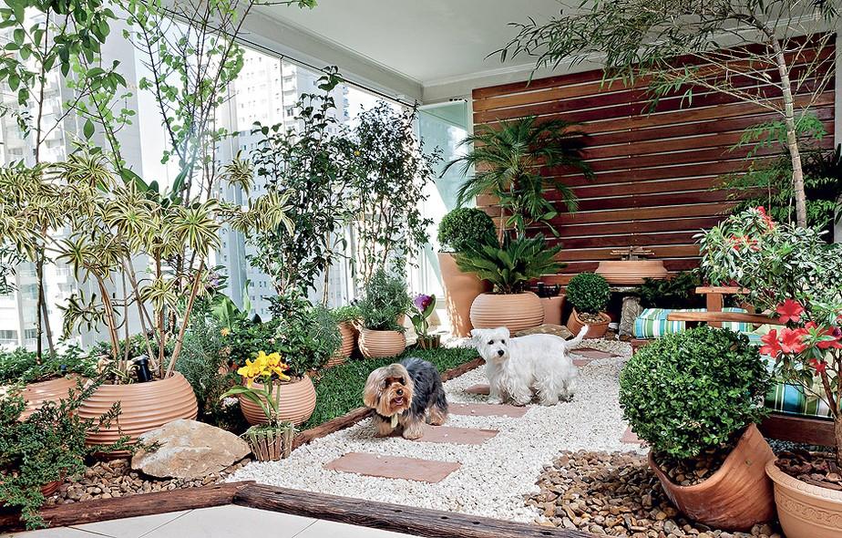 como-fazer-um-jardim-no-quintal
